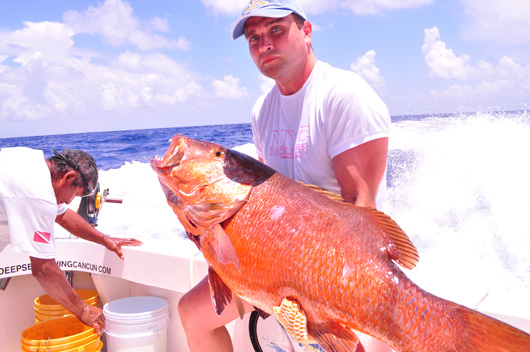 Cubera snapper fishing cancun