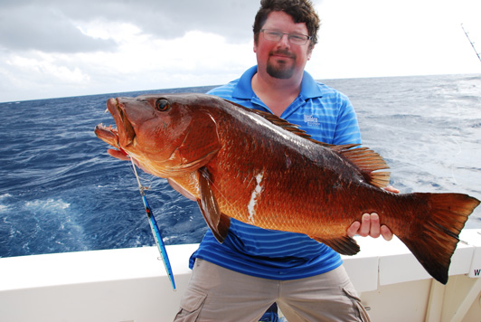Cubera snapper jigging cancun