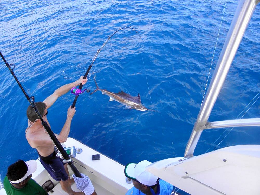 Deep sea fishing pictures cancun isla mujeres fishing for Deep sea fishing mexico