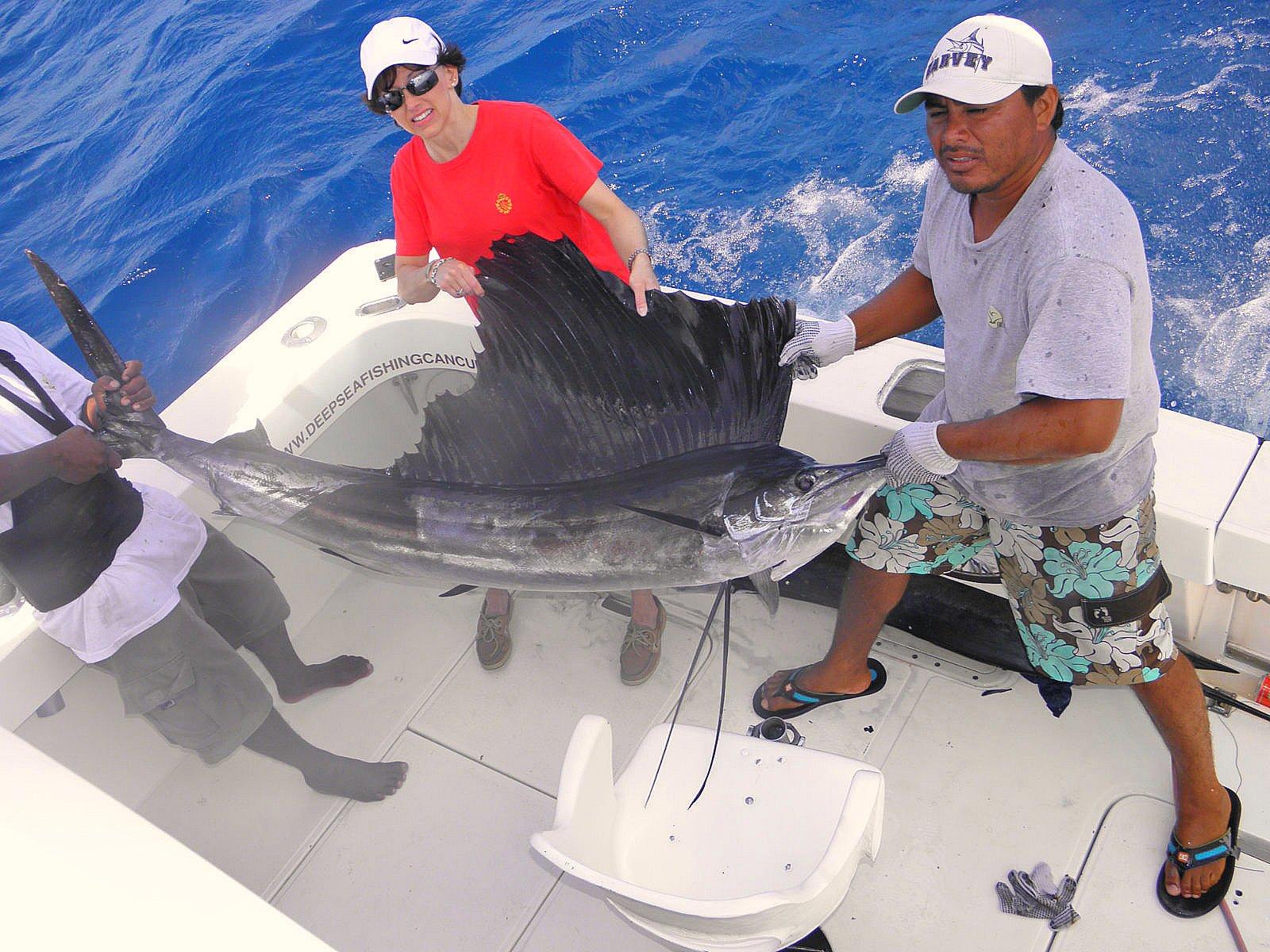 Trip reports playa del carmen and riviera maya playa html for Deep sea fishing riviera maya