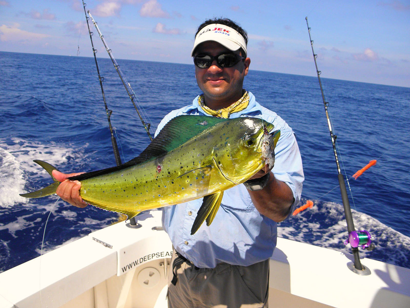 mahi mahi fishing cancun dolphin fish dorado fishing in