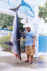 mako shark, deep sea fishing cancun