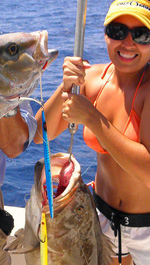 Grouper amberjack jigging cancun