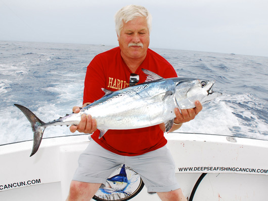 Sportfishing bonito cancun- fishing trips