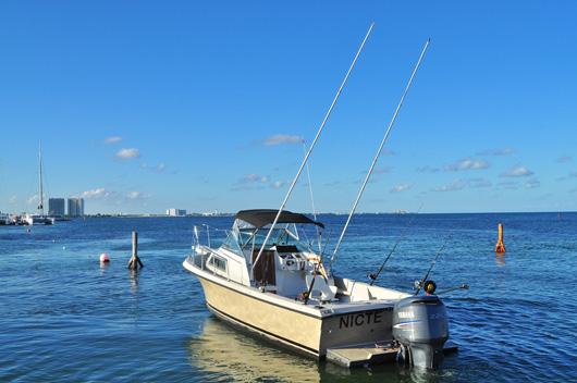 Panga cancun panga fishing sportfishing pangas cancun for Cancun fishing seasons