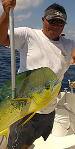 Dorado- mahi mahi fishing cancun- fishing charter in cancun
