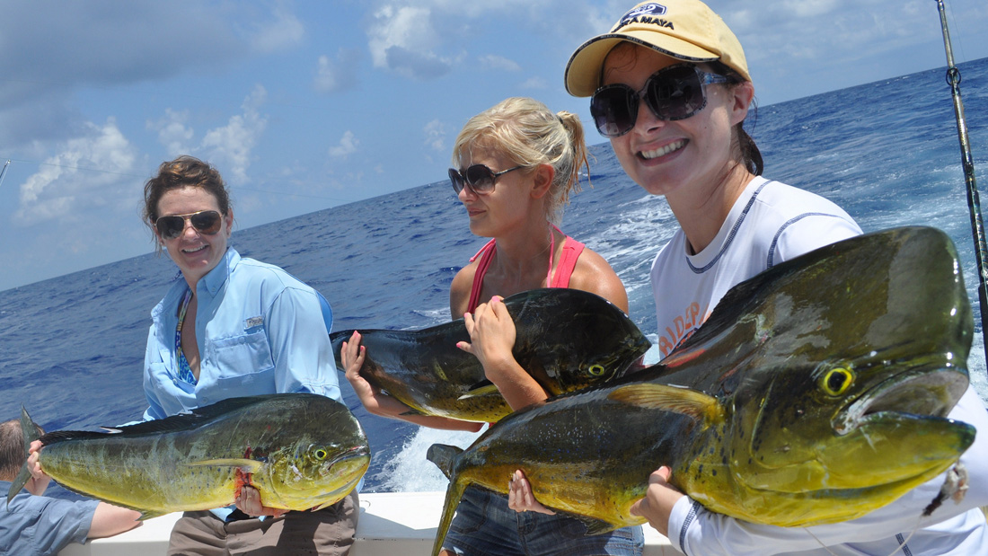 Mahi mahi fishing cancun dolphin fish dorado fishing in for Fish for girls