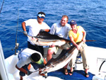 sailfish fishing cancun- cancun fishing for sailfish