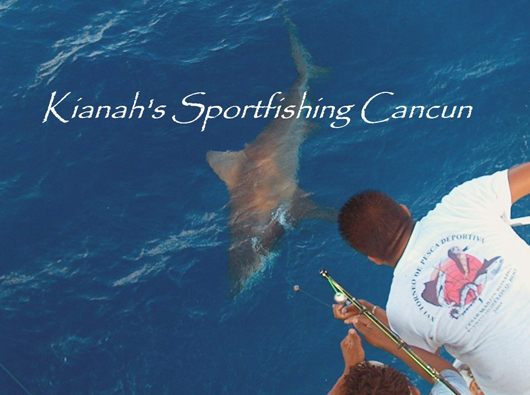 Cancun Shark fishing