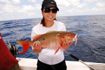 Cancun shared fishing snappers