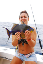 Cancun shared fishing- trigger fish