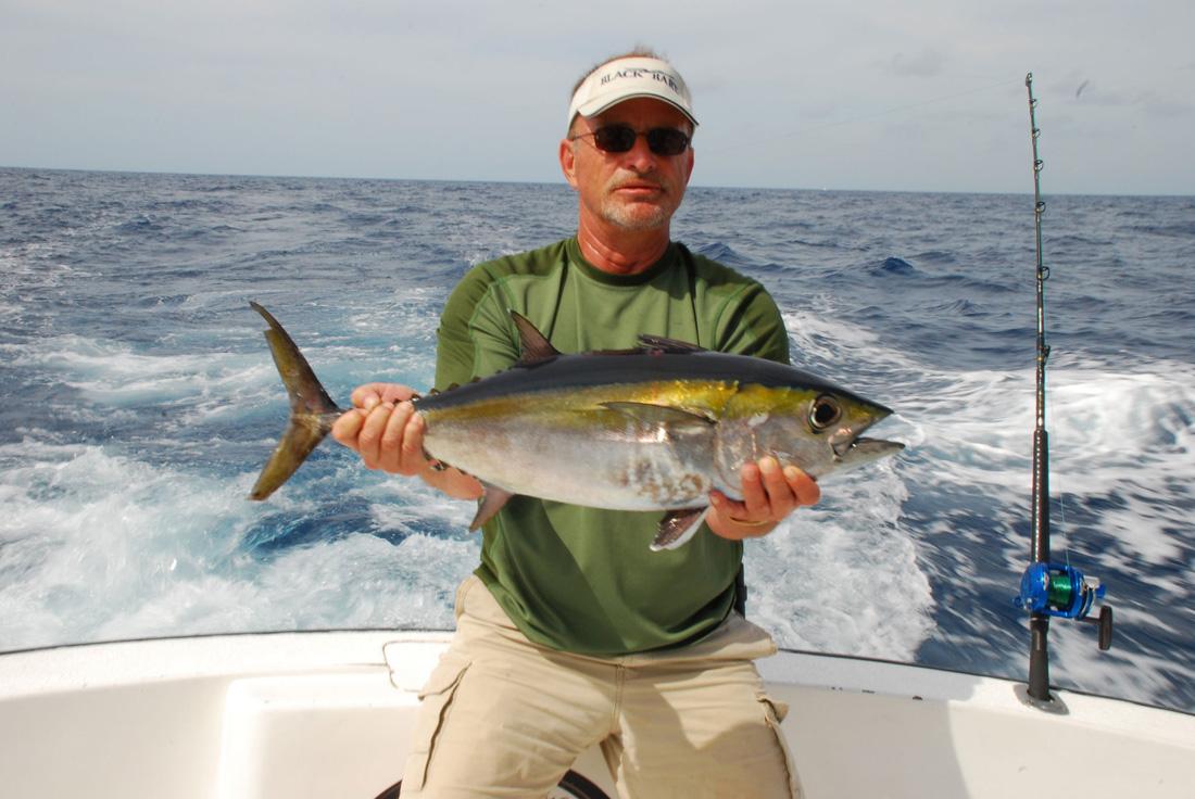 Tuna tuna fishing cancun tuna fishing isla mujeres for Tuna fishing video