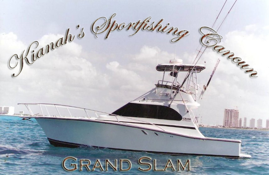 Cancun fishing charters deep sea fishing boats in cancun for Deep sea fishing cancun