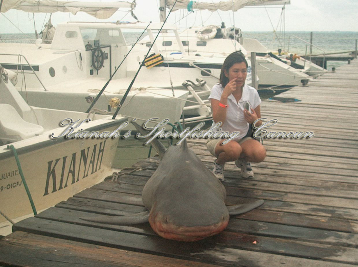 Kianahs Virtual Fishing Report Cancun Sail Fishing Report
