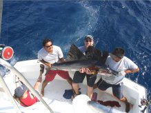 sailfishing cancun reservation